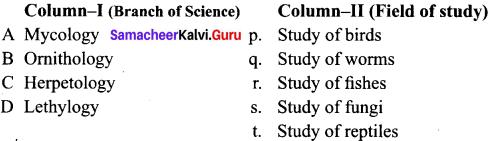 Samacheer Kalvi Guru 11th Biology Chapter 2 Kingdom Animalia
