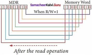Samacheer Kalvi 11th Computer Applications Solutions Chapter 3 Computer Organisation