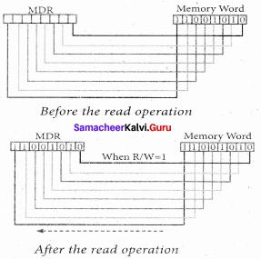 Computer Science Chapter 3 Answers Samacheer Kalvi