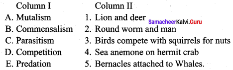 Samacheer Kalvi 12th Bio Zoology Solutions Chapter 10 Organisms and Population