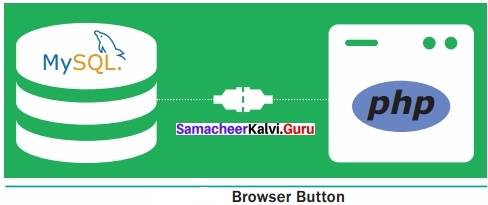 Samacheer Kalvi 12th Computer Applications Solutions Chapter 9 Connecting PHP and MYSQL
