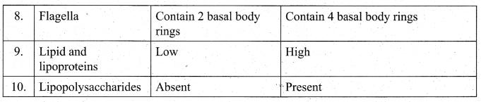 Tamil Nadu 11th Biology Model Question Paper 3 English Medium - 4