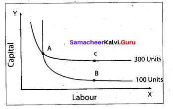 Tamil Nadu 11th Economics Model Question Paper 3 English Medium - 8