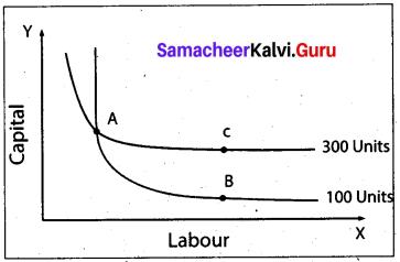 Tamil Nadu 11th Economics Previous Year Question Paper March 2019 English Medium 10
