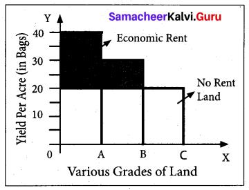 Tamil Nadu 11th Economics Previous Year Question Paper March 2019 English Medium 7