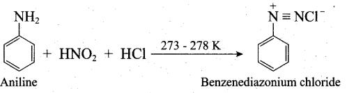 Tamil Nadu 12th Chemistry Model Question Paper 1 English Medium - 17