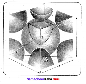 Tamil Nadu 12th Chemistry Model Question Paper 4 English Medium - 17