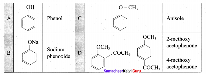 Tamil Nadu 12th Chemistry Model Question Paper 4 English Medium - 29