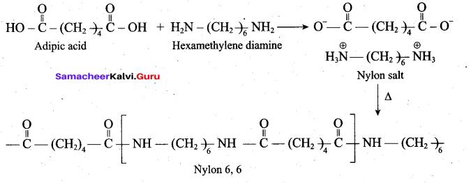 Tamil Nadu 12th Chemistry Model Question Paper 5 English Medium - 24