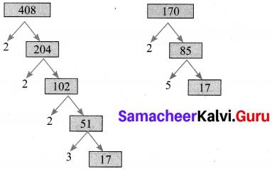 Exercise 2.2 Class 10 Maths Samacheer