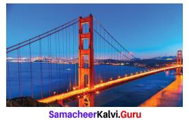 Samacheer Kalvi 6th Maths Term 1 Chapter 3 Ratio and Proportion Ex 3.3 Q6