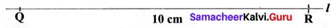 Samacheer Kalvi 6th Maths Term 1 Chapter 4 Geometry Ex 4.1 Q4.2