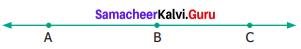 Samacheer Kalvi 6th Maths Term 1 Chapter 4 Geometry Ex 4.1 Q8