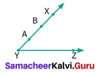 Samacheer Kalvi 6th Maths Term 1 Chapter 4 Geometry Ex 4.2 Q12