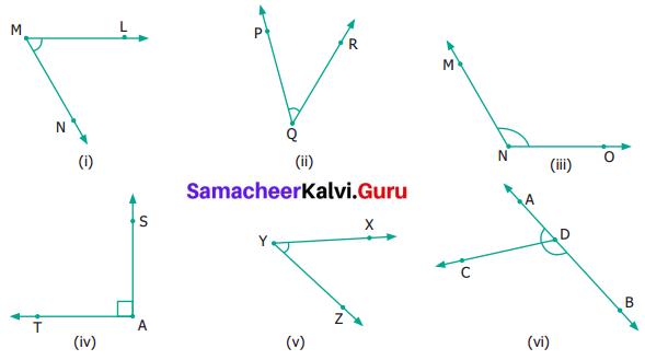 Samacheer Kalvi 6th Maths Term 1 Chapter 4 Geometry Ex 4.2 Q6