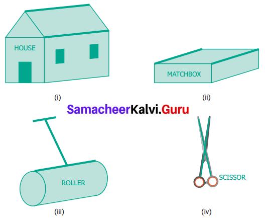 Samacheer Kalvi 6th Maths Term 1 Chapter 4 Geometry Ex 4.4 Q1