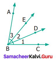 Samacheer Kalvi 6th Maths Term 1 Chapter 4 Geometry Ex 4.4 Q3