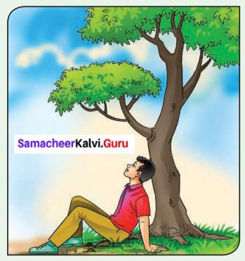 Samacheer Kalvi.Guru 6th Science Force And Motion