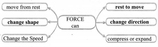 Samacheer Kalvi Guru 6th Standard Science Force And Motion