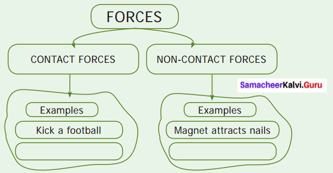Samacheer Kalvi 6th Science Solutions Term 1 Chapter 2 Force and Motion 13