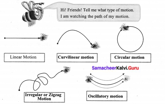 6 Samacheer Science Guide Force And Motion