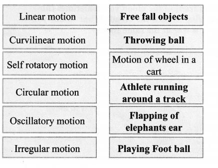 Samacheerkalvi.Guru 6th Science Force And Motion