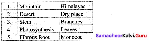Samacheer Kalvi 6th Science Solutions Term 1 Chapter 4 The Living World of Plants 2