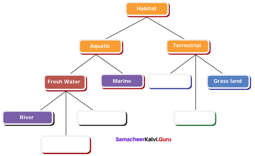 Samacheer Kalvi 6th Science Solutions Term 1 Chapter 4 The Living World of Plants 3