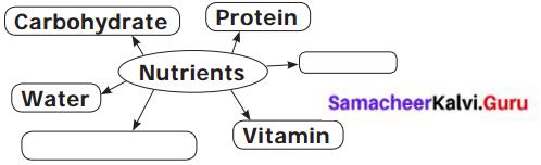Samacheer Kalvi Guru 6th Science Health and Hygiene