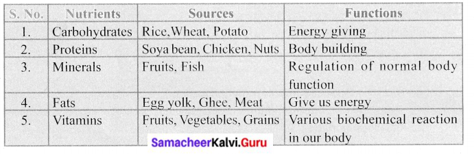 Samacheerkalvi.Guru 6th Science Health and Hygiene