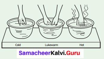Heat Lesson For Class 6 Heat Samacheer Kalvi