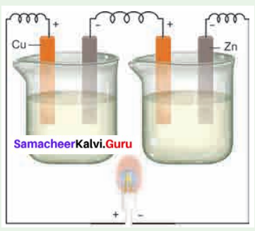 Samacheer Kalvi 6th Science Solutions Term 2 Chapter 2 Electricity 19
