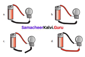 Samacheer Kalvi 6th Science Term 2