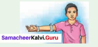 Samacheer Kalvi 6th Science Solutions Term 2 Chapter 6 Human Organ Systems 3