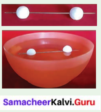 Samacheer Kalvi 6th Science Solutions Term 3 Chapter 1 Magnetism 7