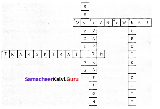 Samacheer Kalvi 6th Science Solutions Term 3 Chapter 2 Water 2