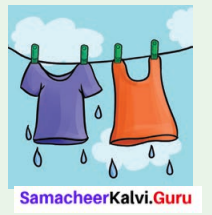 Samacheer Kalvi 6th Science Solutions Term 3 Chapter 2 Water 7