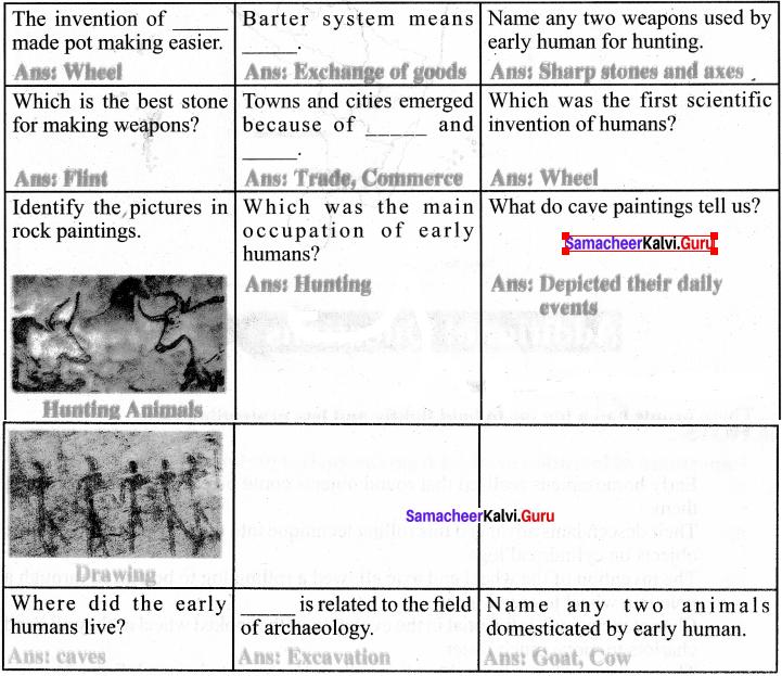Samacheer Kalvi Guru 6th Social Science Chapter 2 Human Evolution