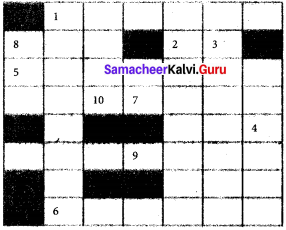 Indus Valley Civilization Samacheer Kalvi 6th Social Science History Solutions Term 1