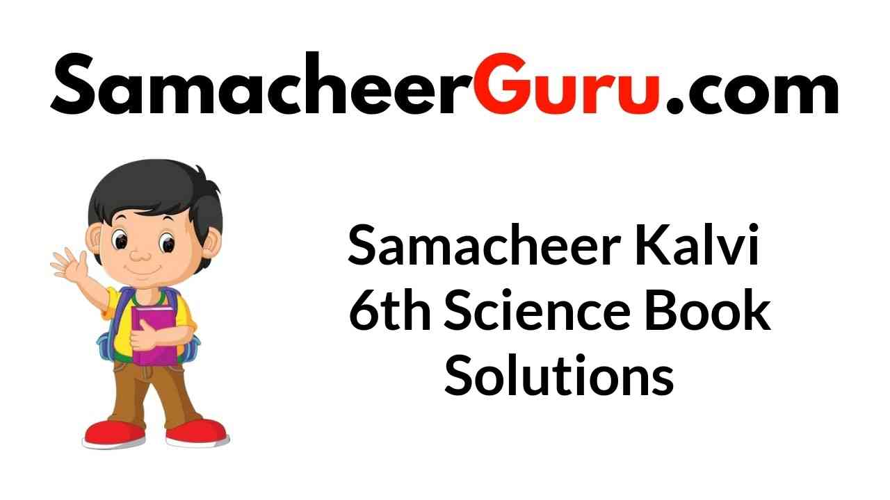 Samacheer Kalvi 6th Science Book Answers Solutions Guide