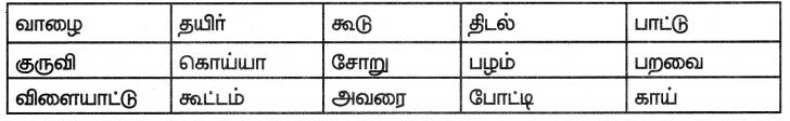 Samacheer Kalvi 7th Tamil Solutions Term 1 Chapter 2.5 நால்வகைக் குறுக்கங்கள் - 3