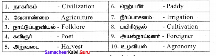 Samacheer Kalvi 7th Tamil Solutions Term 3 Chapter 1.5 அணி இலக்கணம் - 7