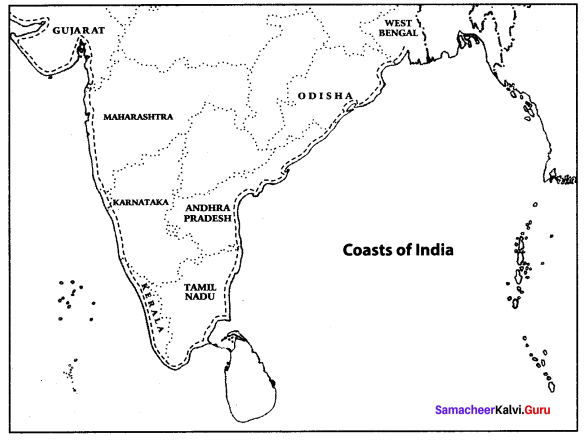 Samacheer Kalvi 10th Social Science Geography Solutions Chapter 1 India Location, Relief and Drainage 65