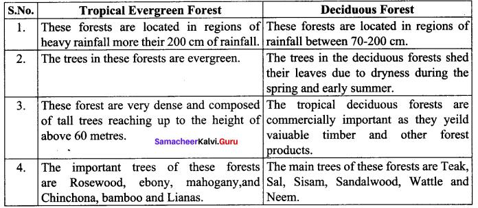 Climate And Natural Vegetation Of India Class 10 Samacheer Kalvi