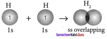 Samacheer Kalvi 11th Chemistry Solutions Chapter 10 Chemical Bonding-123