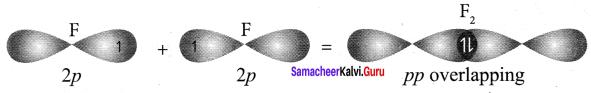 Samacheer Kalvi 11th Chemistry Solutions Chapter 10 Chemical Bonding-124