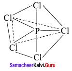 Samacheer Kalvi 11th Chemistry Solutions Chapter 10 Chemical Bonding-138