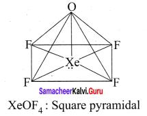 Samacheer Kalvi 11th Chemistry Solutions Chapter 10 Chemical Bonding-142