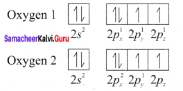 Samacheer Kalvi 11th Chemistry Solutions Chapter 10 Chemical Bonding-143
