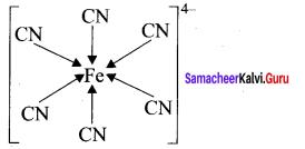 Samacheer Kalvi 11th Chemistry Solutions Chapter 10 Chemical Bonding-168